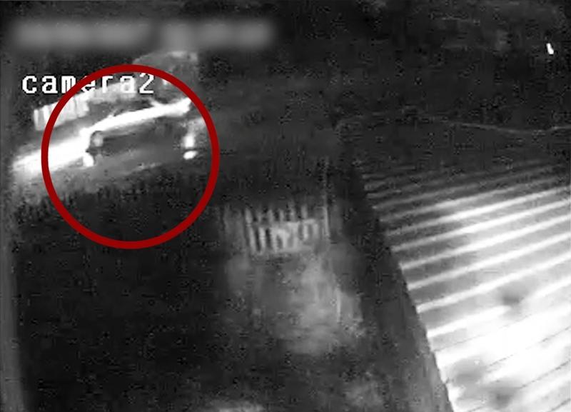 ВПрокопьевске повидео скамеры отыскали водителя, который сбил пешехода