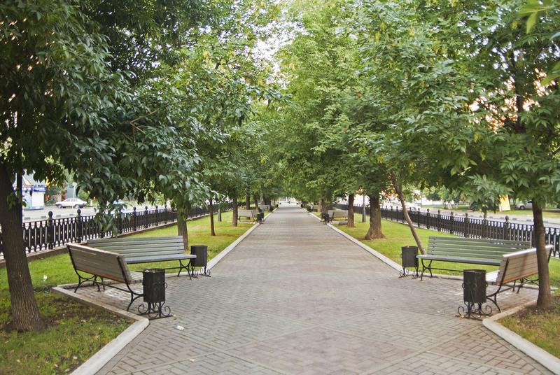 ВКедровке наместе пустыря появится сквер «Первое свидание»